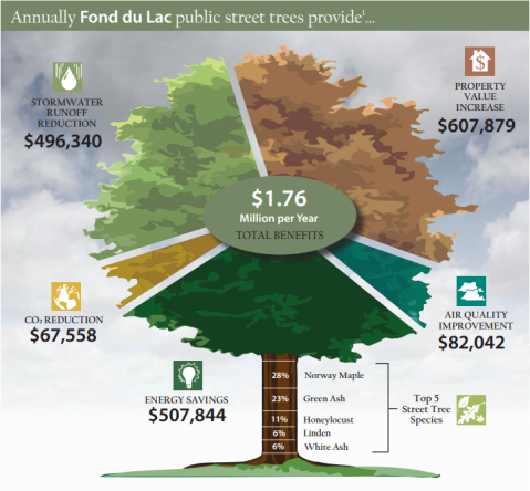 I-trees - Street trees provide